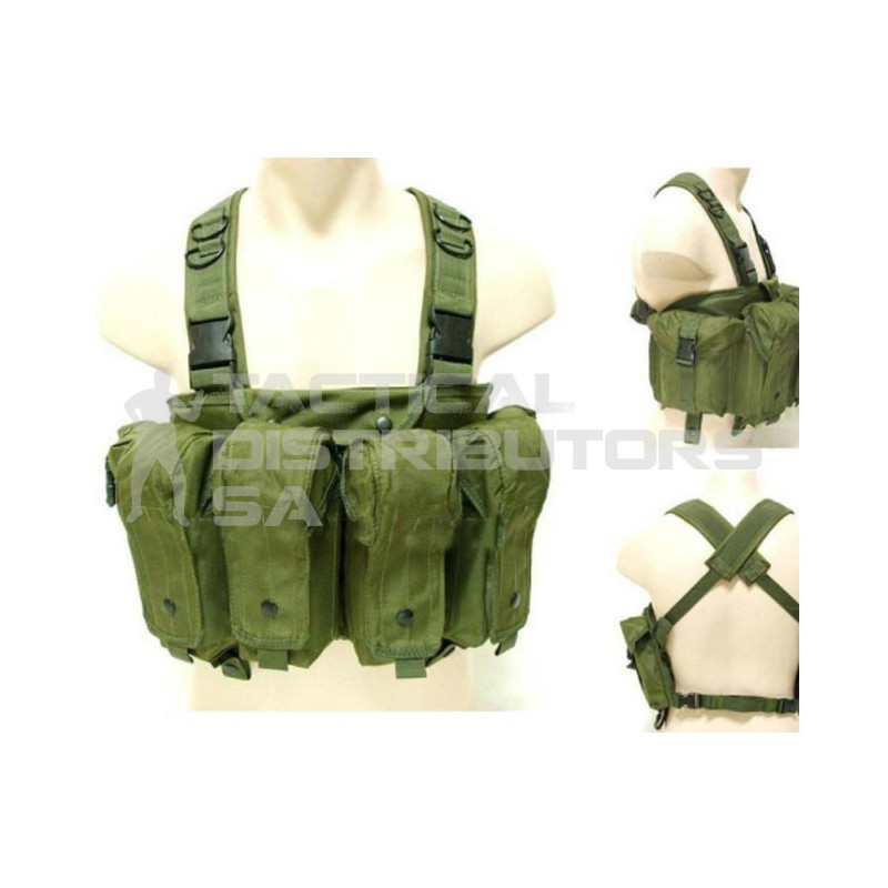 Basic AK Style Chest Rig...